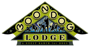 Moon Dog Lodge